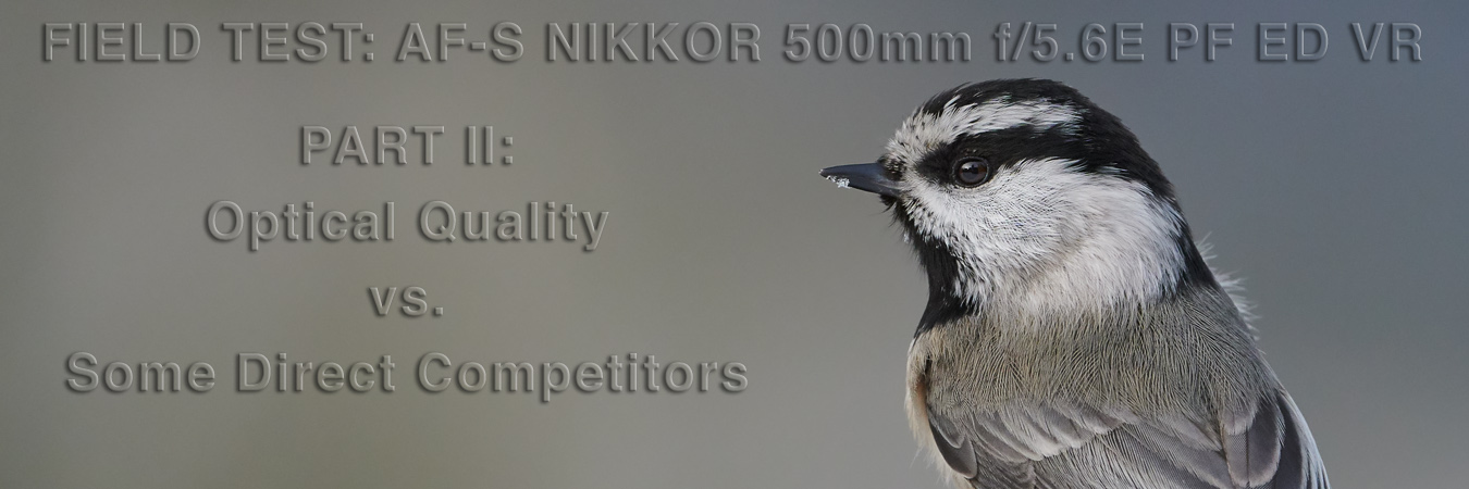 Nikon 500mm PF Field Test: Optical Quality vs. Some Direct Competitors